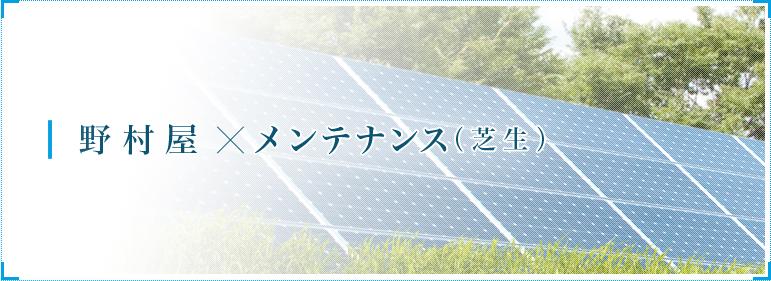野村屋×メンテナンス(芝生)
